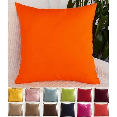 THROW PILLOWS / CASES