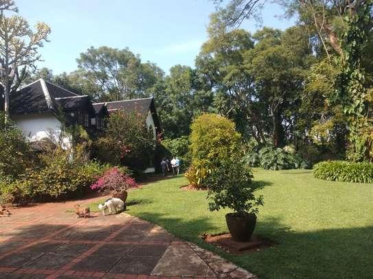 Thigiri - House, Bungalow image 16