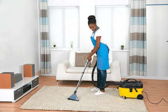 Carpet Cleaning Nairobi-From small area rug to apartment buildings we clean all types of rug and carpets. Reliable, fast, friendly and honest are just a few things we are known for. image 3