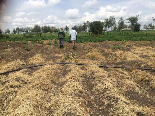 Highly partially agricultural/livestock land image 2