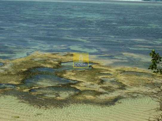 Diani - Land, Commercial Land, Residential Land image 6