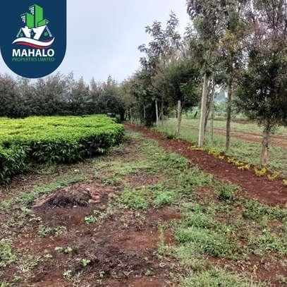 0.5 ac land for sale in Limuru Area image 12