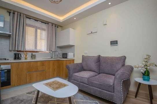 Stunningly Luxurious 1bedroom Fully Furnished In Kileleshwa image 5