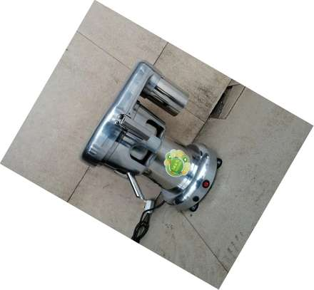 Commercial Fruit Juicer And Sugarcane Extractor. image 1