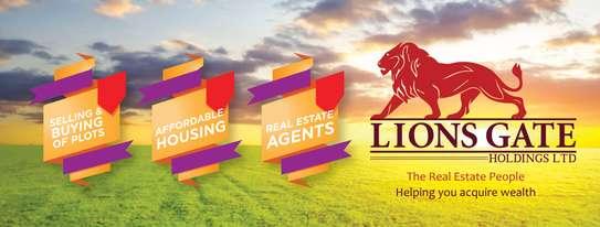 Lions Gate Holdings Ltd image 1
