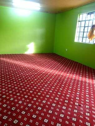 Elegant VIP wall to wall carpet image 3