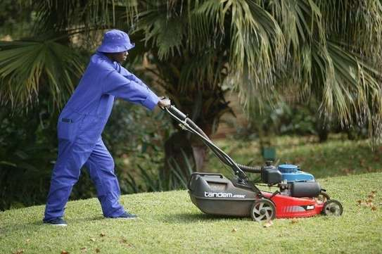 Hire a Reliable & Affordable Nanny/Domestic Worker/Caregiver/Cook or Gardener/Driver image 5