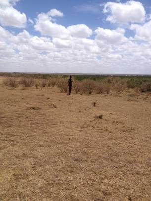 43.9 ACRES OF FERTILE AGRICULTURAL LAND IN LAIKIPIA image 3