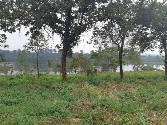 Ruiru - Land image 1