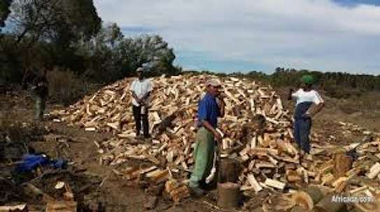 Firewood For Sale - Delivered to You Nairobi image 15
