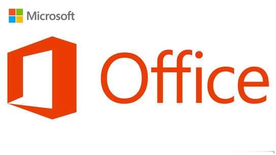 Microsoft Office 2019 Professional Plus (Windows/Mac) image 2