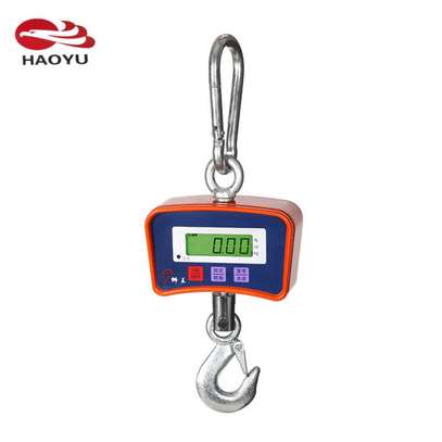 Digital Crane Scale From kenya Hanging Scales 500kg image 1