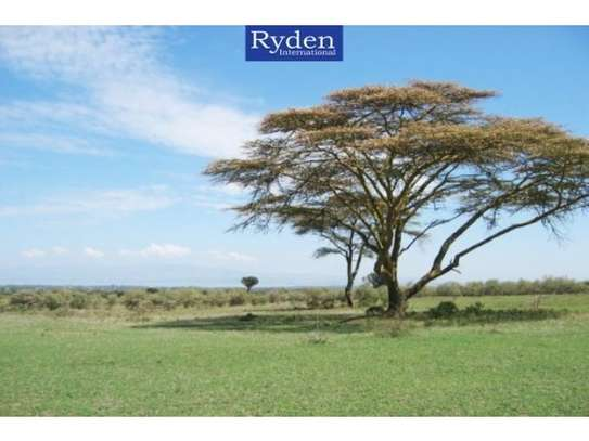 land for sale in Naivasha East image 7