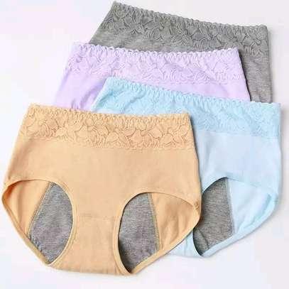 Unique menstrual antileakage panties image 1