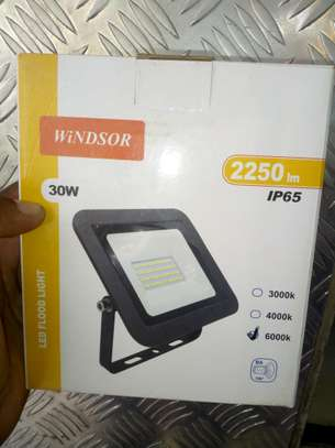 Windsor 30watt LED floodlight ip 65