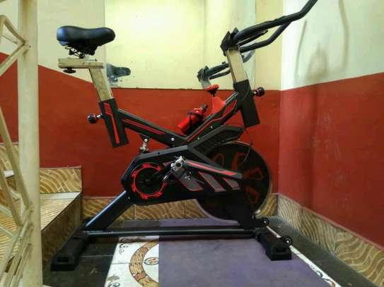 S100 spin bike image 2