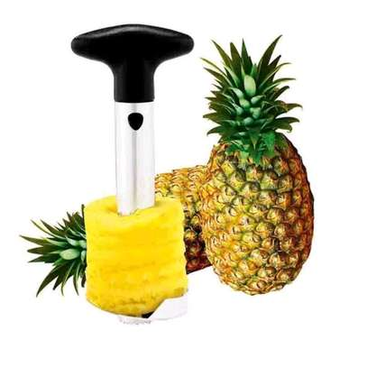 Pineapple peeler image 1