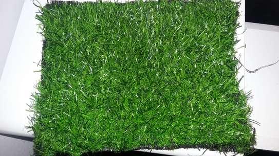 Elegant Grass Carpet image 5