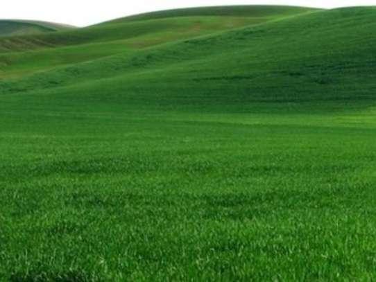 land for sale in New Kitusuru image 1