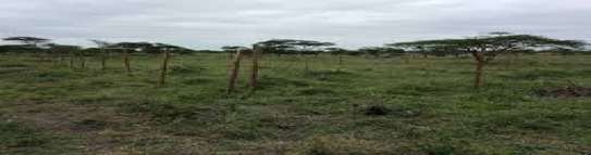 Land for Sale in Kiserian Kajiado, Pipeline Road.