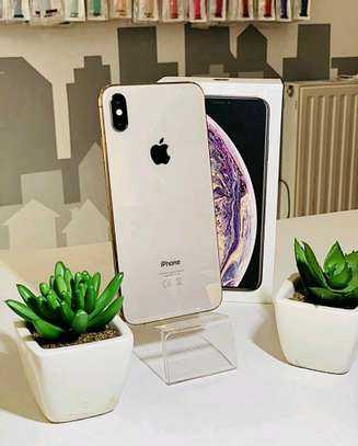 Apple Iphone Xs Max / 512 Gigabytes / Gold And Wireless Airpods image 1