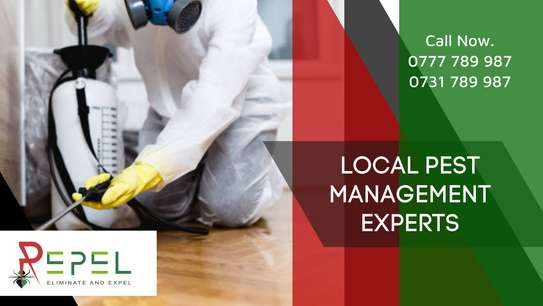 Repel Pest Management & Cleaning Solutions Ltd image 3
