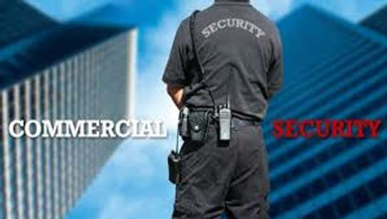Professional Reliable And Affordable Security Services For Your Business & Home image 1