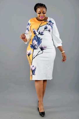 Ladies Dress image 1