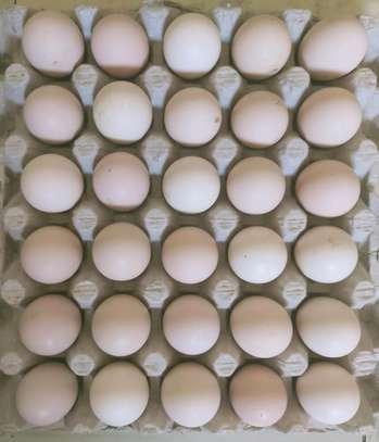 Fresh Organic Kienyeji Eggs image 1