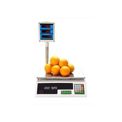 ACS 30 Digital Weighing Scale - Silver image 1