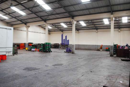 90000 ft² commercial property for sale in Limuru Area image 12