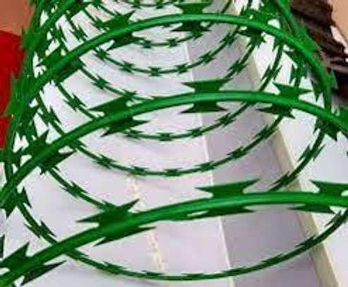 Green Razor wire image 3