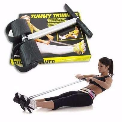 Trimmer Abs Exerciser, Waist Trimmer, Fitness image 1