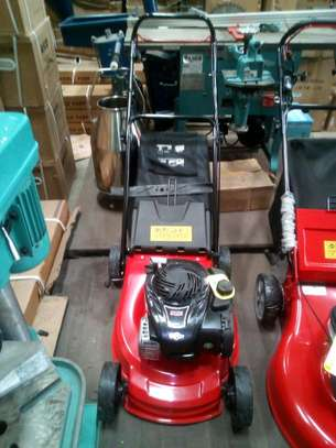 Briggs and Stratton lawn mower image 1