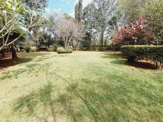 3 bedroom house for rent in Lavington image 18
