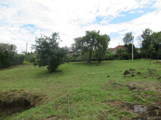 North Muthaiga - Land, Residential Land image 18