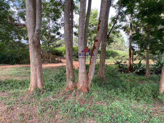 0.25 ac land for sale in Ruiru image 4