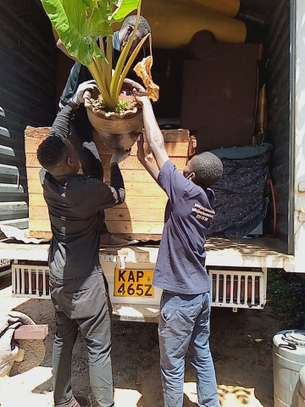 Precious Moving and Relocations Limited image 1