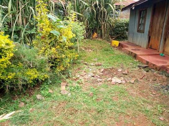 Ruaka - Land image 4