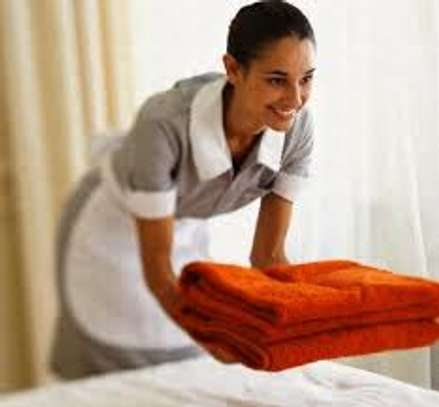 Trained, Professional Domestic Workers. Call Us Today. image 1