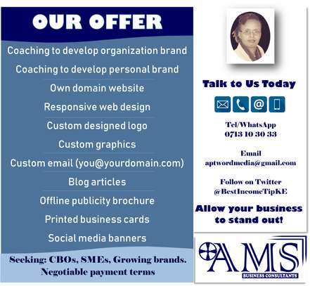 AMS Business Consultant image 1