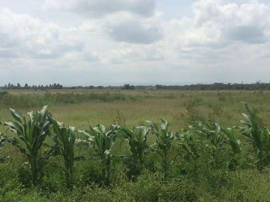 Highly partially agricultural/livestock land image 3