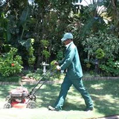 Garden Maintenance Services | Hire Best Gardeners When You Need Them | Contact us today! image 10