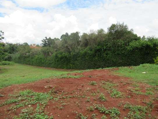 North Muthaiga - Land, Residential Land image 10