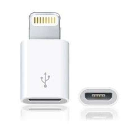 Micro-USB to Lightning Connector for iPhone