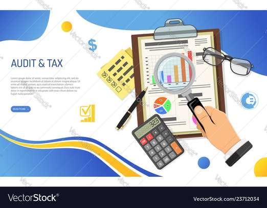 Accounting, Auditing, Taxation, Financial Investigations image 4
