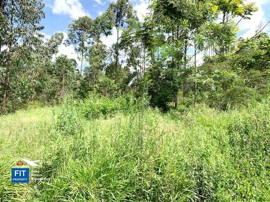 8094 m² land for sale in North Muthaiga image 4