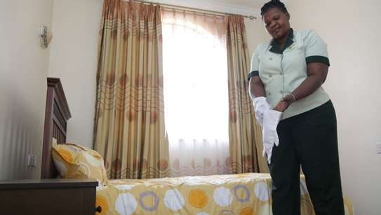 Bestcare Cleaning Services.Trained Nannies/Gardening/Painting Service image 6