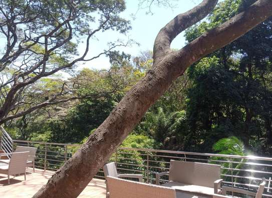 3 bedroom apartment for rent in Muthaiga Area image 17