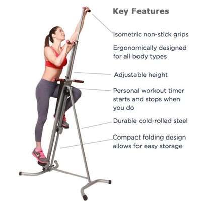 The original patented Vertical Climber image 1